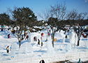 February  Onuma-Hakodate Snow and Ice Festival